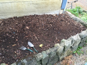 Cleared raised bed