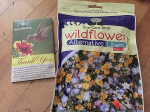 Wildflower Alternative Lawn & Hummingbird Mix